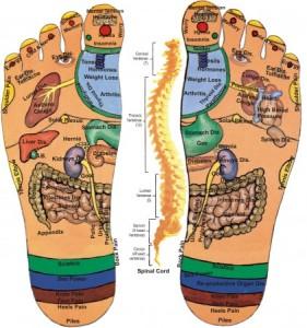 Acupressure foot chart